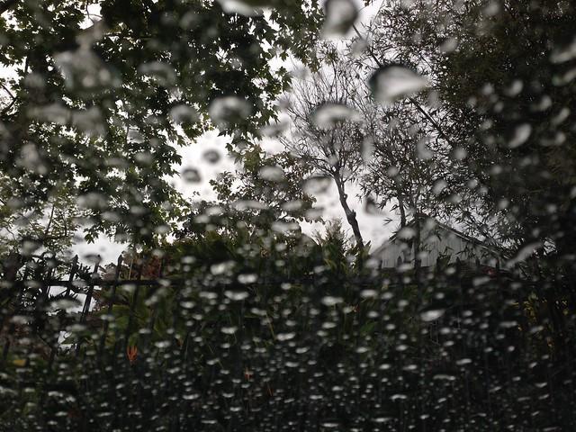 it rained. in june.