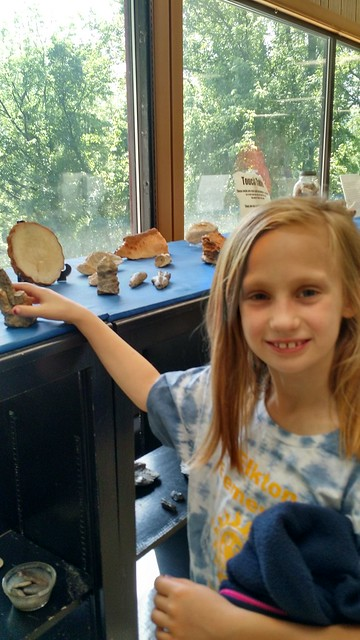May 28 2015 Grand Caverns 2nd grade field trip (8)