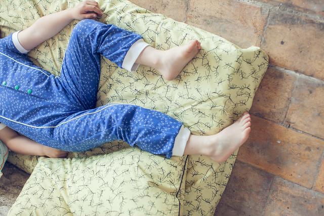 Zonen 09 fabric