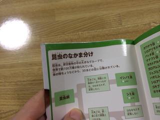 「ピッチン」で大切な本を保護する