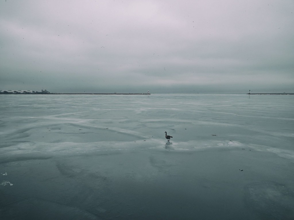 Skate | A different type of ice skating, Lake Michigan, Chic… | Flickr