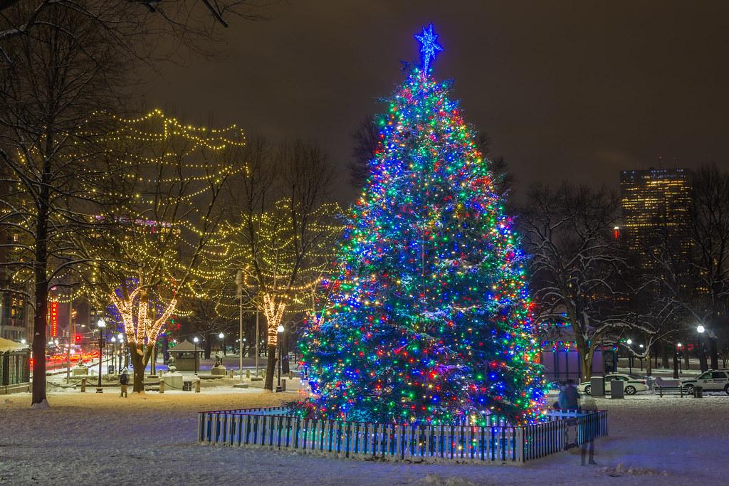 ... Boston Common Christmas 2016 | by jlucierphoto - Boston Common Christmas 2016 The Tree At Boston Common. Flickr