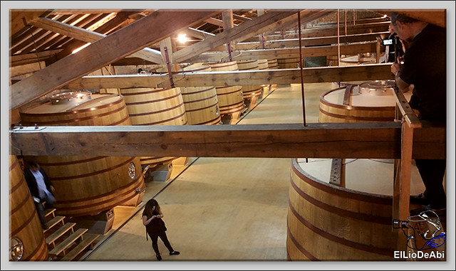 Un día en La Rioja Alta  (3)