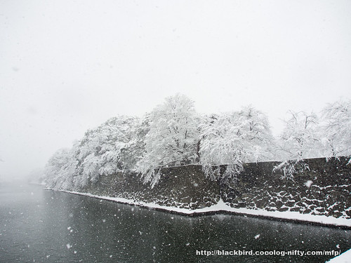 Snowday 1 #03