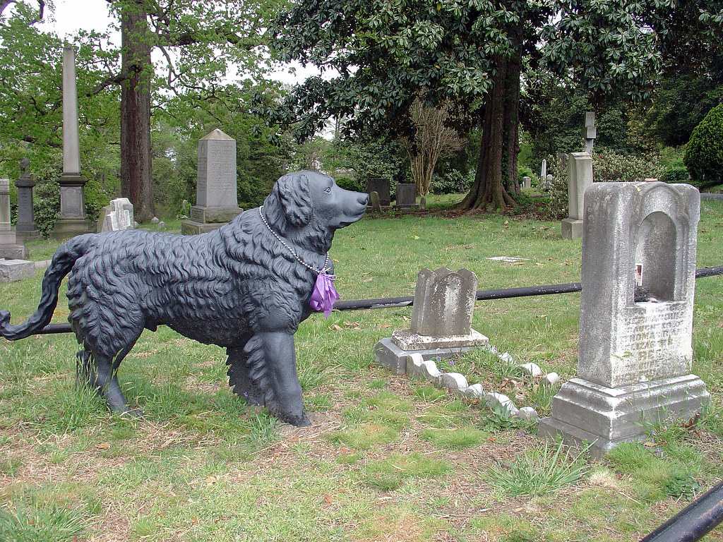 guarding her grave this is the famous cast iron dog in hol flickr. Black Bedroom Furniture Sets. Home Design Ideas