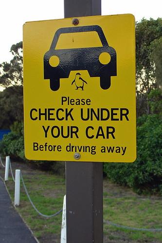 Phillip Island Car Hire Cowes Vic