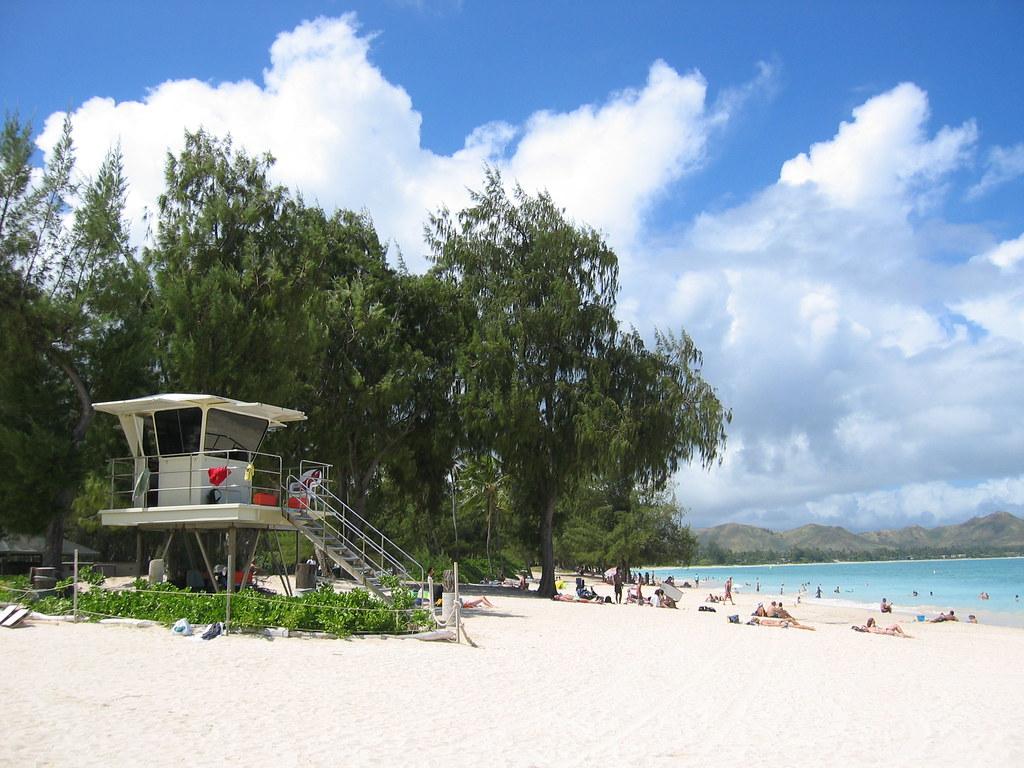 aloha paradise taken at kailua beach oahu is hawaii