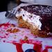 eaten smore cake thing