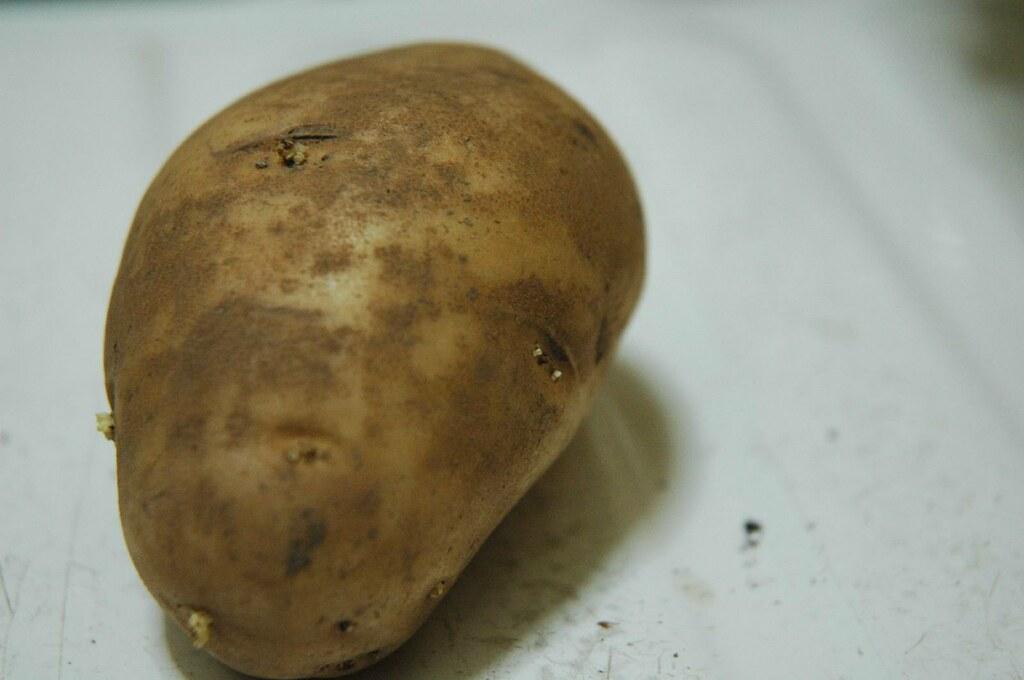 Food Porn Turkey Surprise - The Potato  Everything -3049