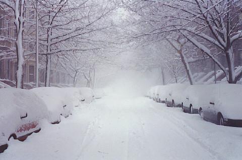 Snow On Second Street Snow On Second Street In Park