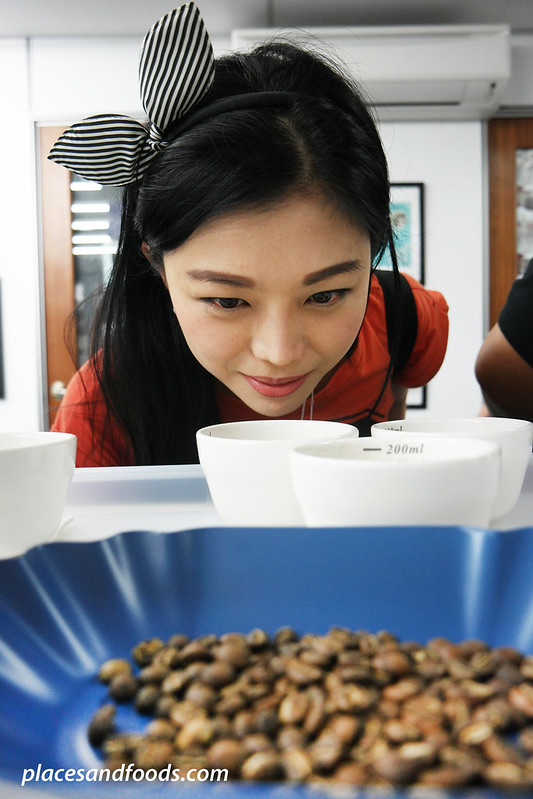 honda city bloggers drive 2015 kelly chin coffee barista guild