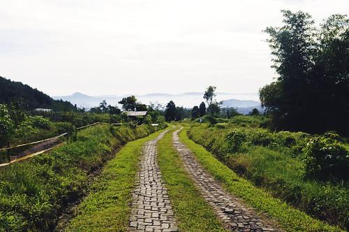Beautiful Bandung 1304