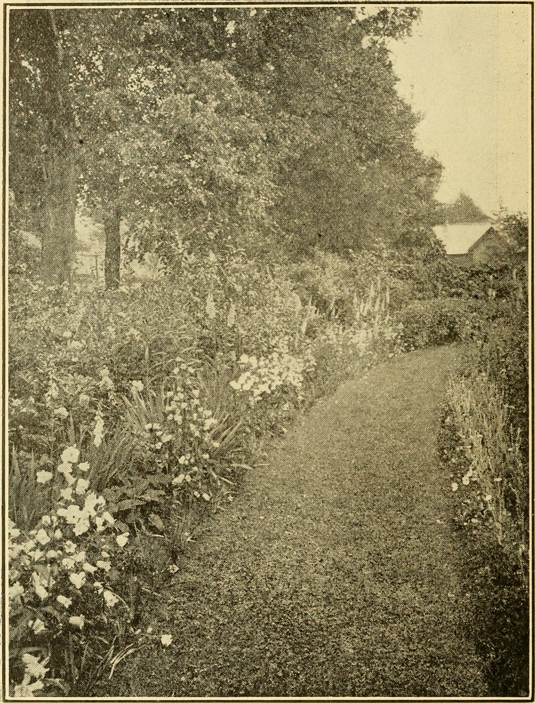 Image From Page 17 Of The Beautification Of Home Grounds 1916