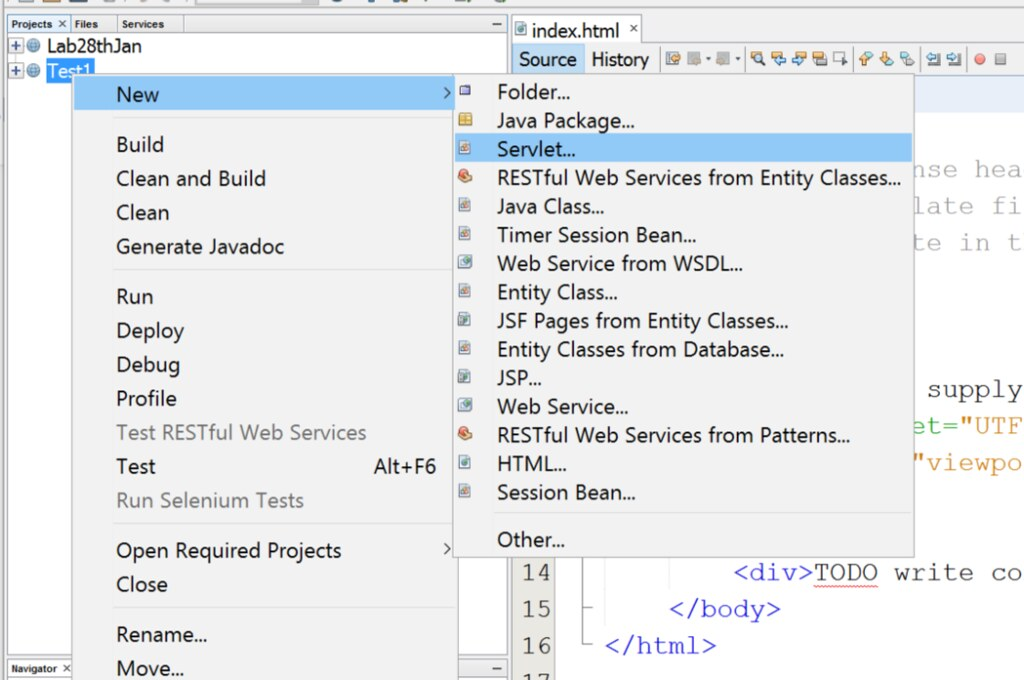 Web Tools(2)How to develop a servlet web application by netbeans