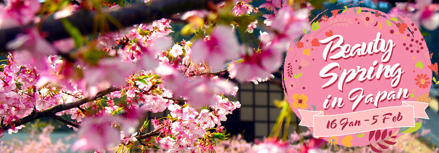 beauty spring in japan