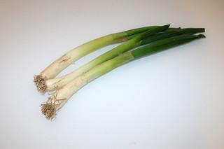 06 - Zutat Frühlingszwiebeln / Ingredient scallions