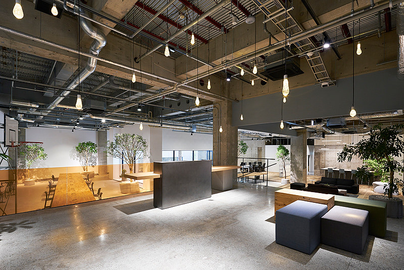 Reforma de espacios oficinas de akqa espacios vives for Reformas de oficinas