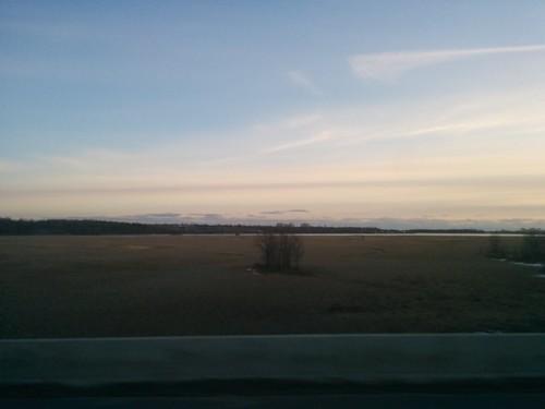 Marshes of the Cataraqui (1)