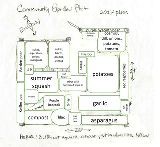 my 2017 community garden plan