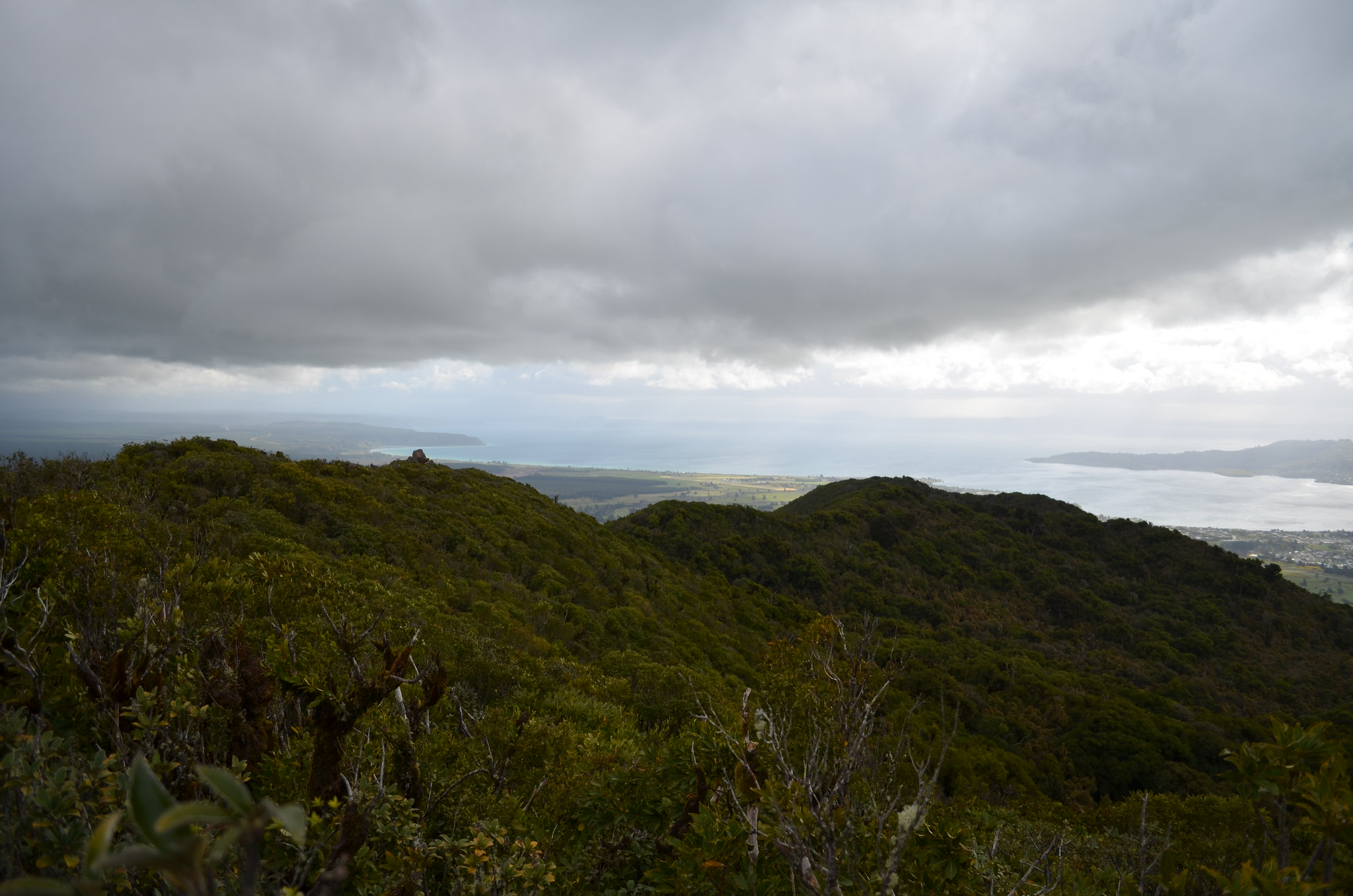 from Mt. Tauhara 4