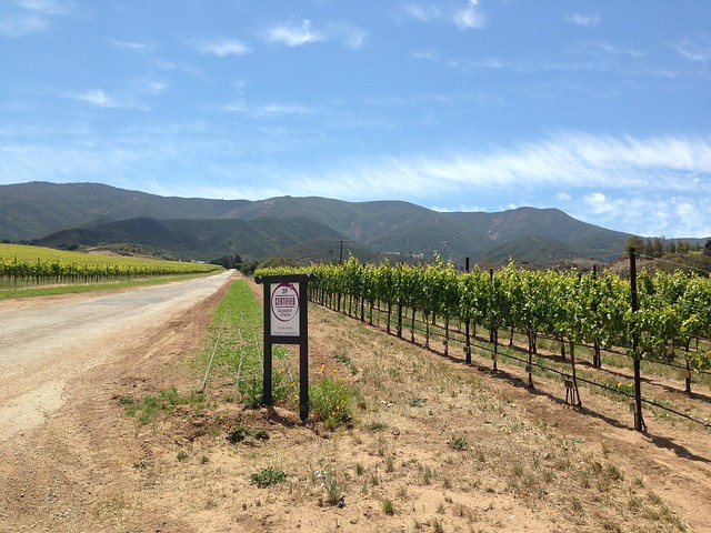 Estate Vineyard ATV Adventure at Hahn Vineyards