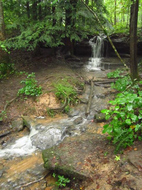 Stream Falls