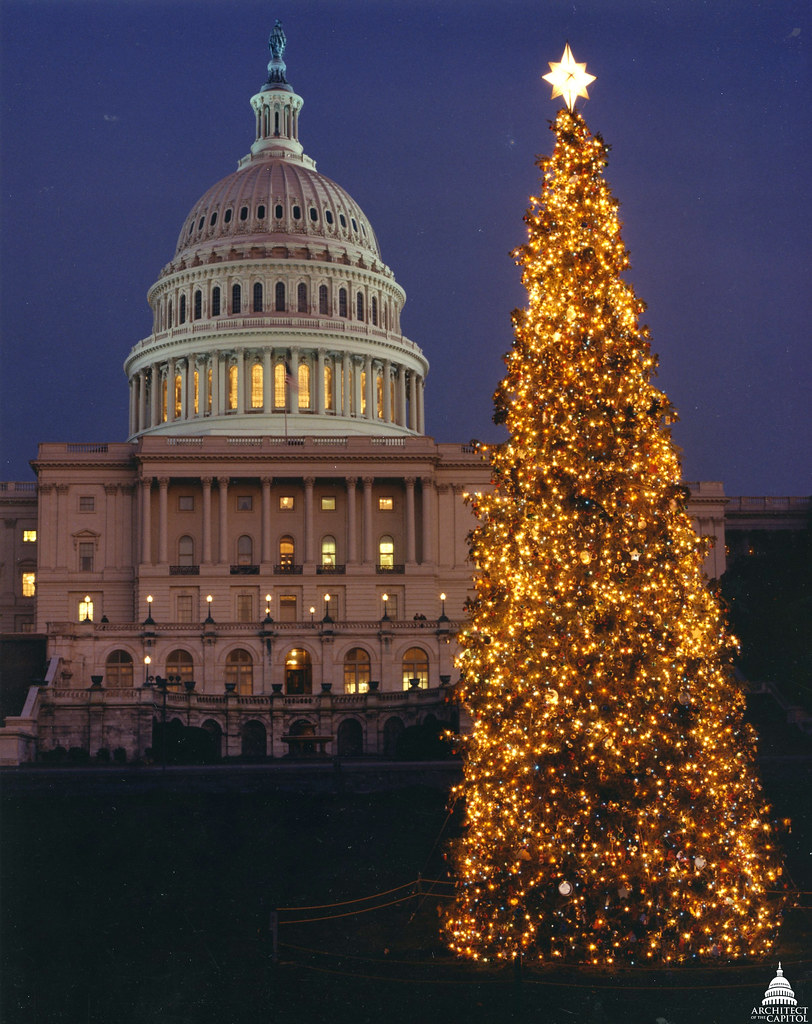 1990 us capitol christmas tree by uscapitol
