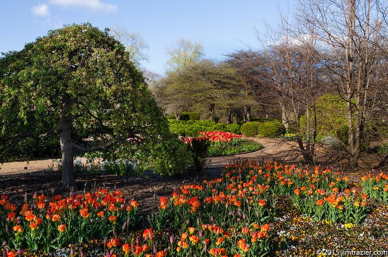 Upper Bur Oak Garden