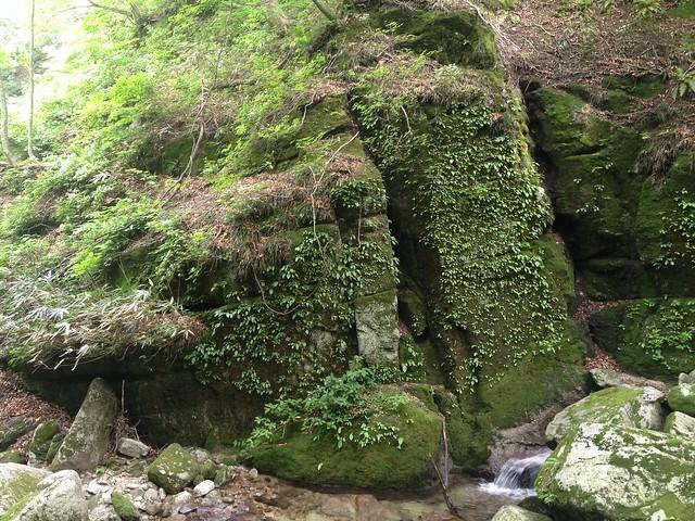 貝月山 長者平ルート 登山道 岩