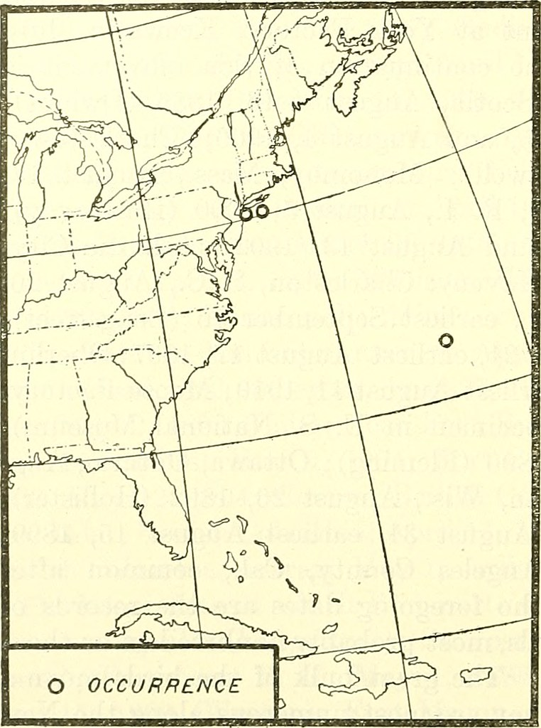 Image From Page 659 Of Bulletin Of The U S Department Of