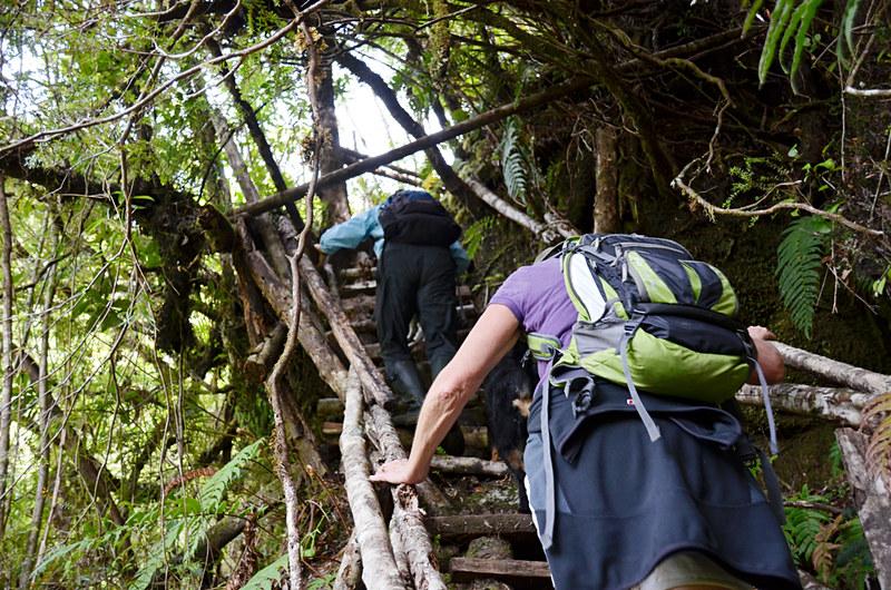Patricio's stairs, Posada Quelat, Quelat, Chile