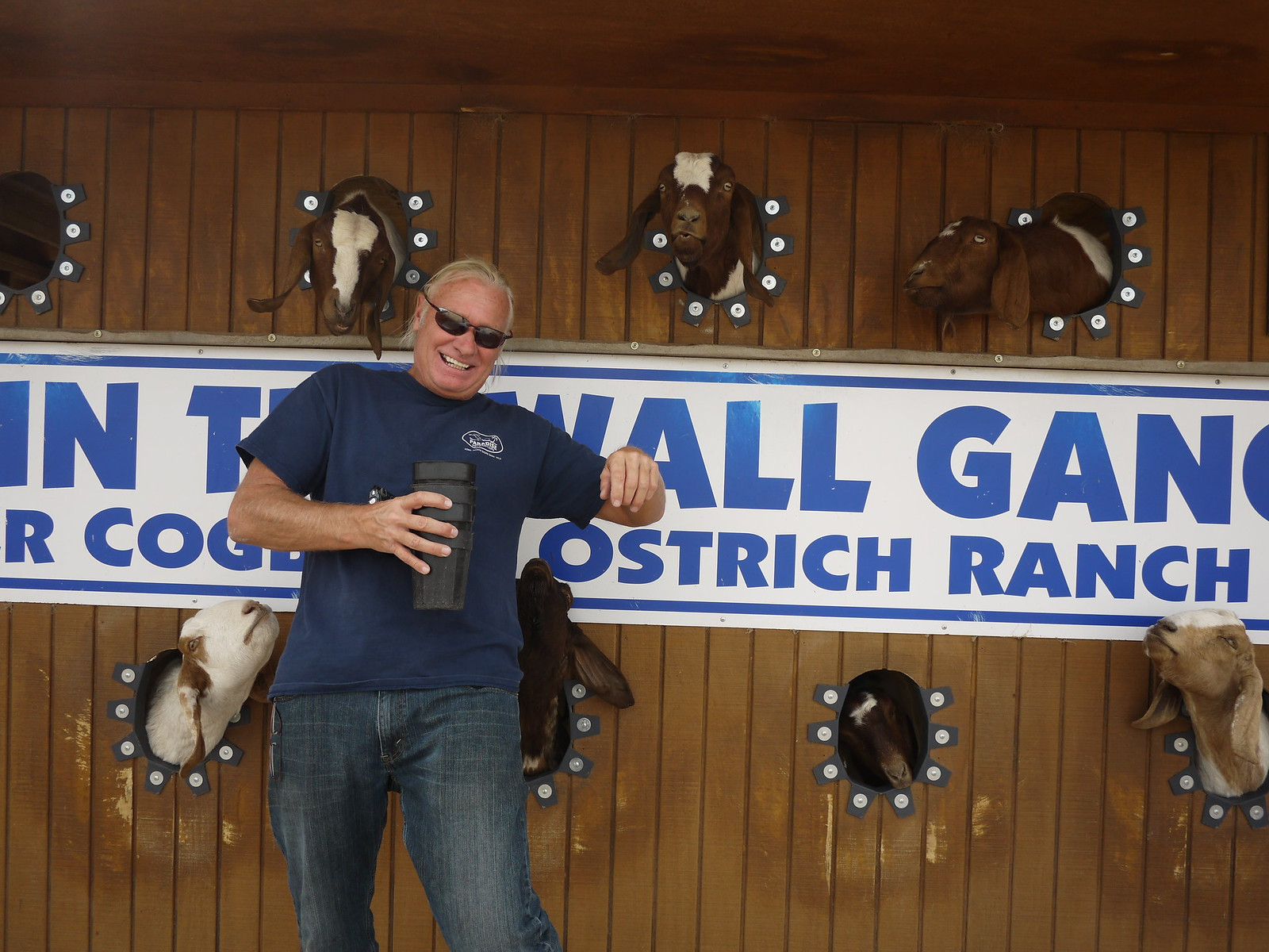 PIC: Rooster Cogburn Ostrich Ranch - Bill and the goats