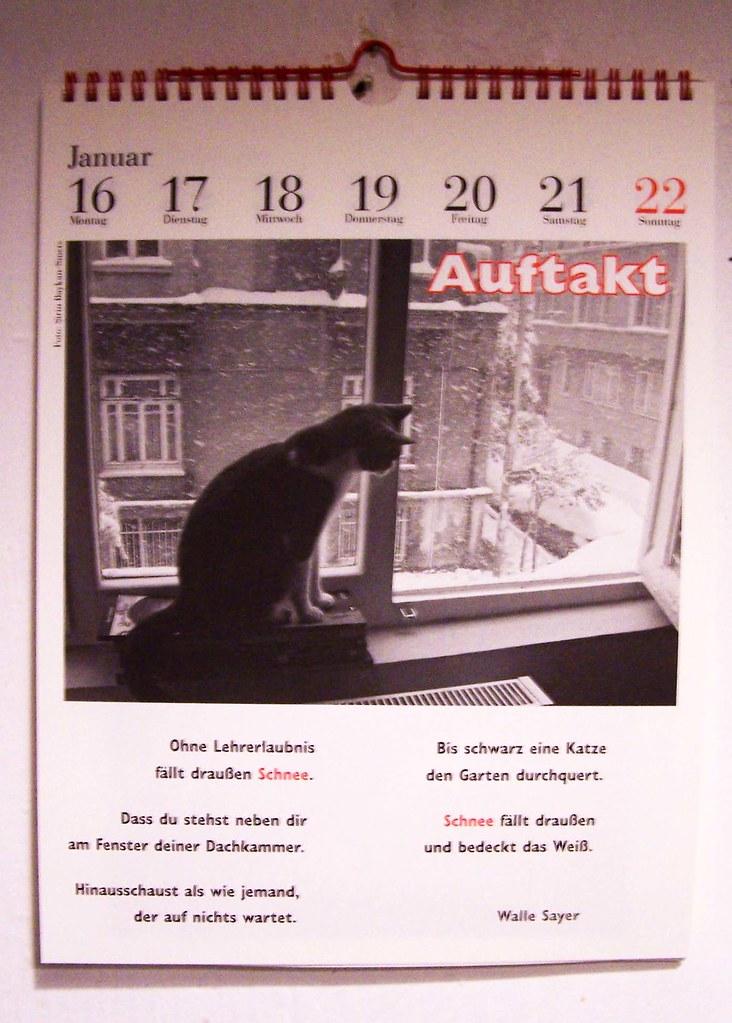 Katz im Kalender
