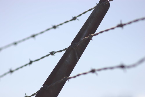 barbed wire | by grendelkhan