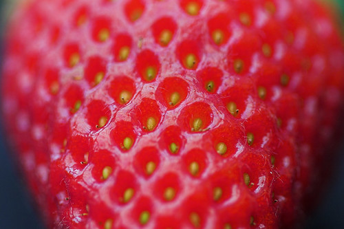 Photo Friday - Red Strawberry | by Swaity