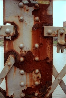 Cross-processed rust | by rbrwr