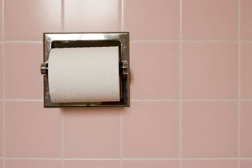 Toilet paper roll and pink tile | by Jane Waterbury