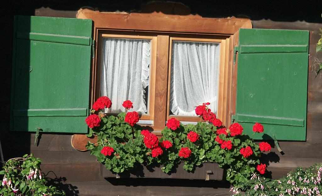 Fenster Mit Fensterladen Und Blumenkasten Fenster Mit Blum Flickr