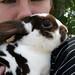 shoulder bunny