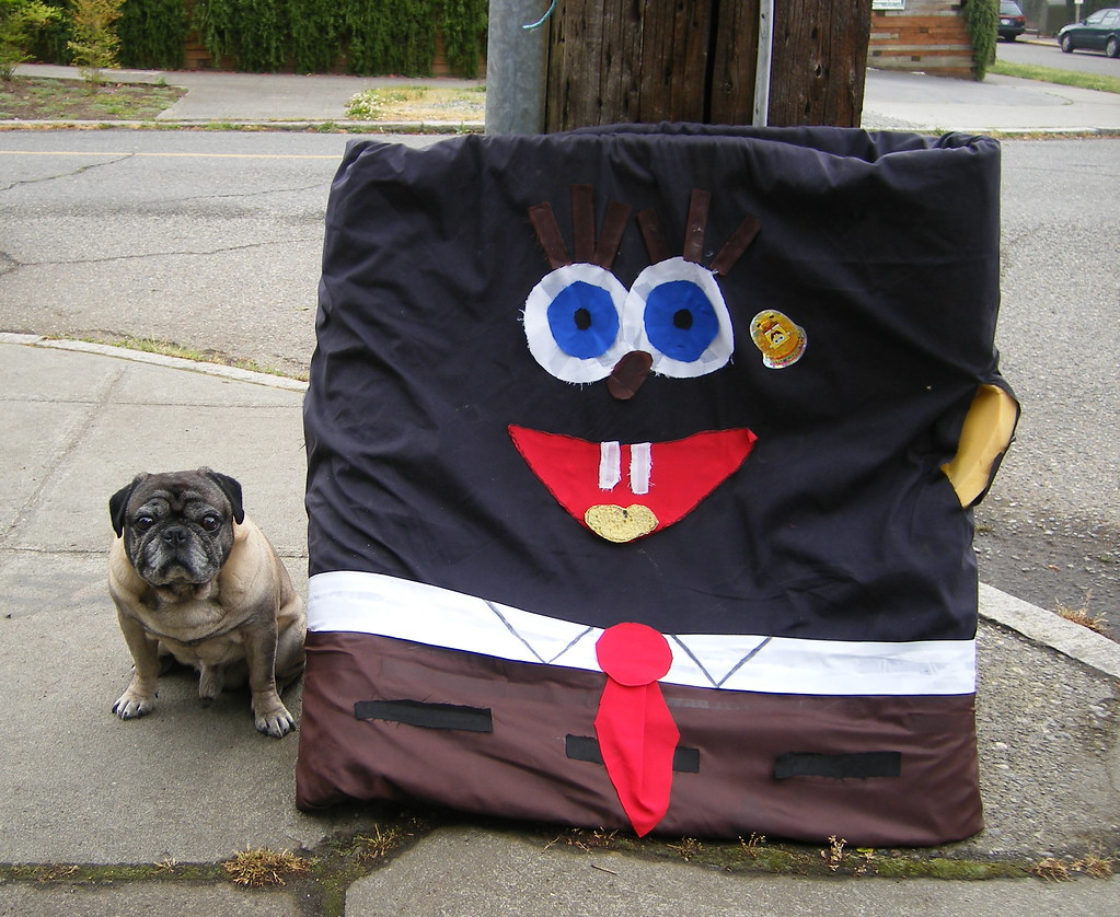 Pug With Black Spongebob Squarepants Part Of The Make Your Own Beautiful  HD Wallpapers, Images Over 1000+ [ralydesign.ml]