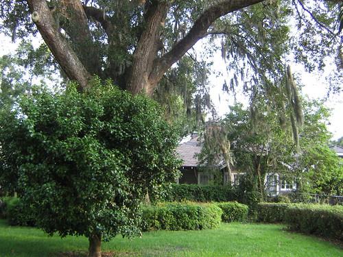Senior Apartments Garden Grove Ca