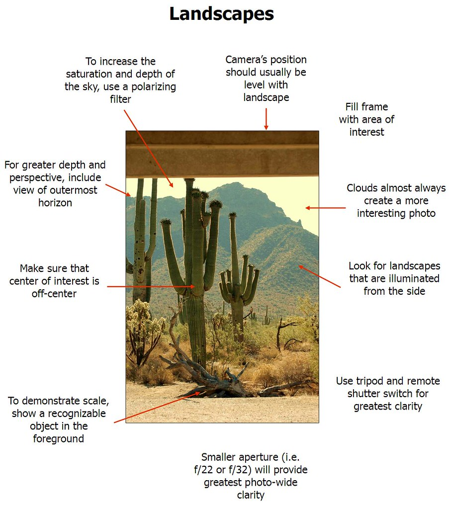 Digital desert landscape diagram i forgot to give everyone flickr digital desert landscape diagram by lilacgs pooptronica Gallery