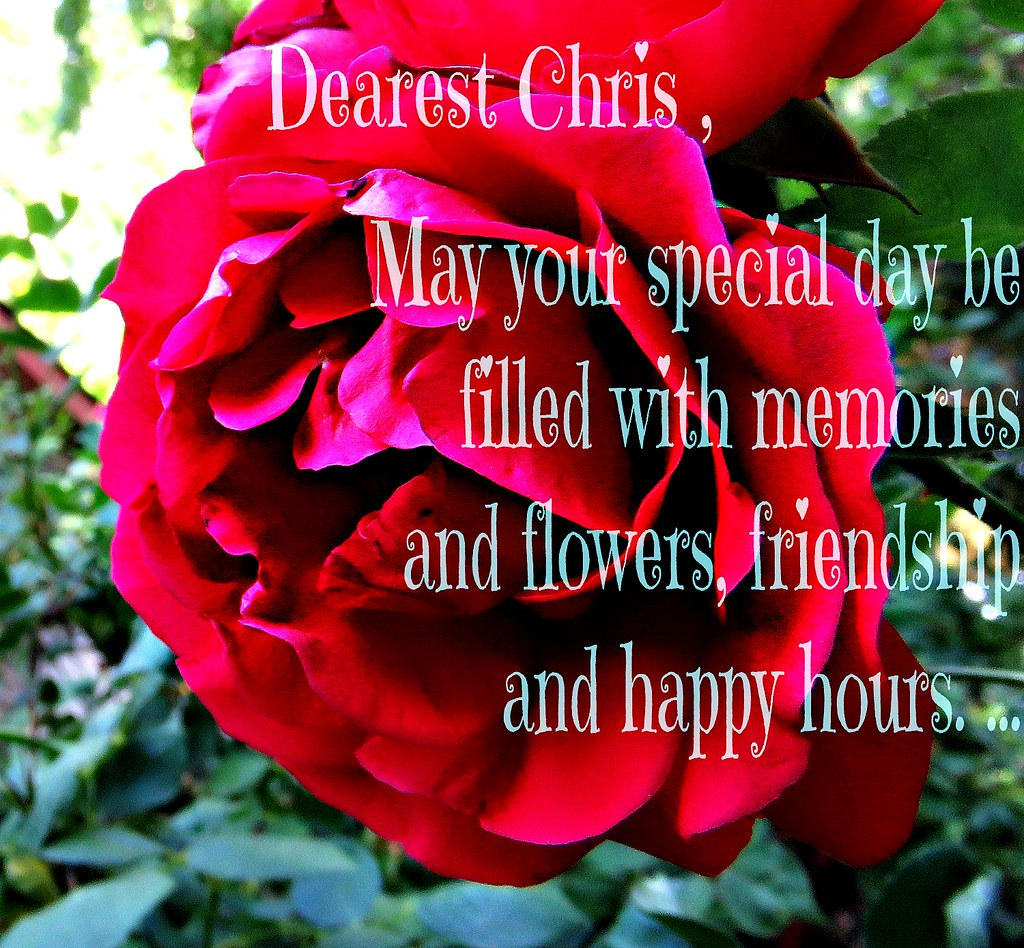 Happy Birthday Chris Martiancat July 23 With All Our Flickr