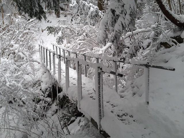綿向山 鉄橋
