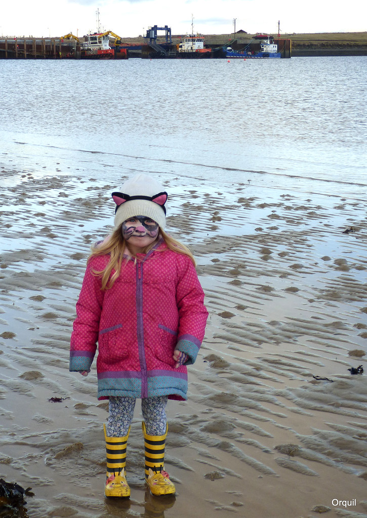 edith at low tide houton bay edith is the youngest daugh flickr