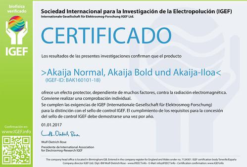 IGEF-Zertifikat-BAK-SP