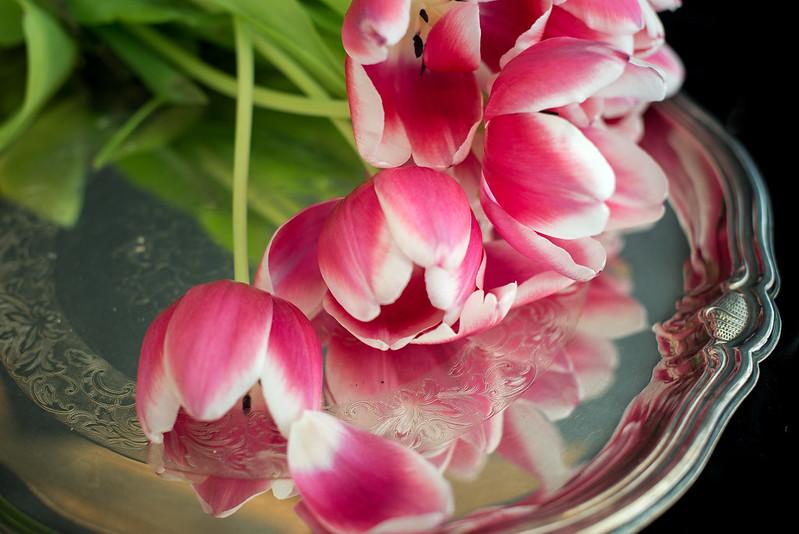 matognatur tulipaner02
