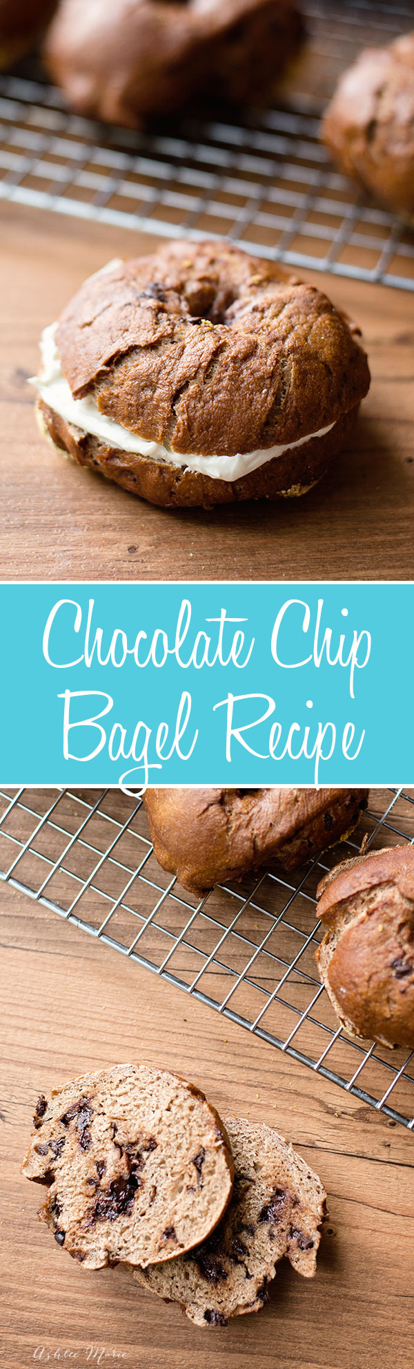 Chocolate Chocolate Chip Bagels | Ashlee Marie - real fun with real food