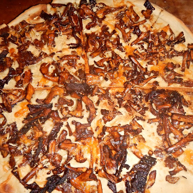 Chanterelle pizza