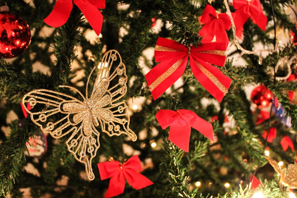 Christmas-2016-white-daisy-blog (3)